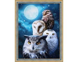 Bilde av Night Owls 30x40cm