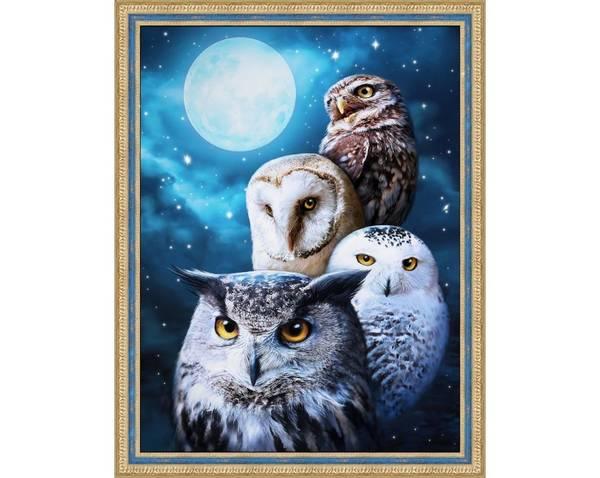 Night Owls 30x40cm