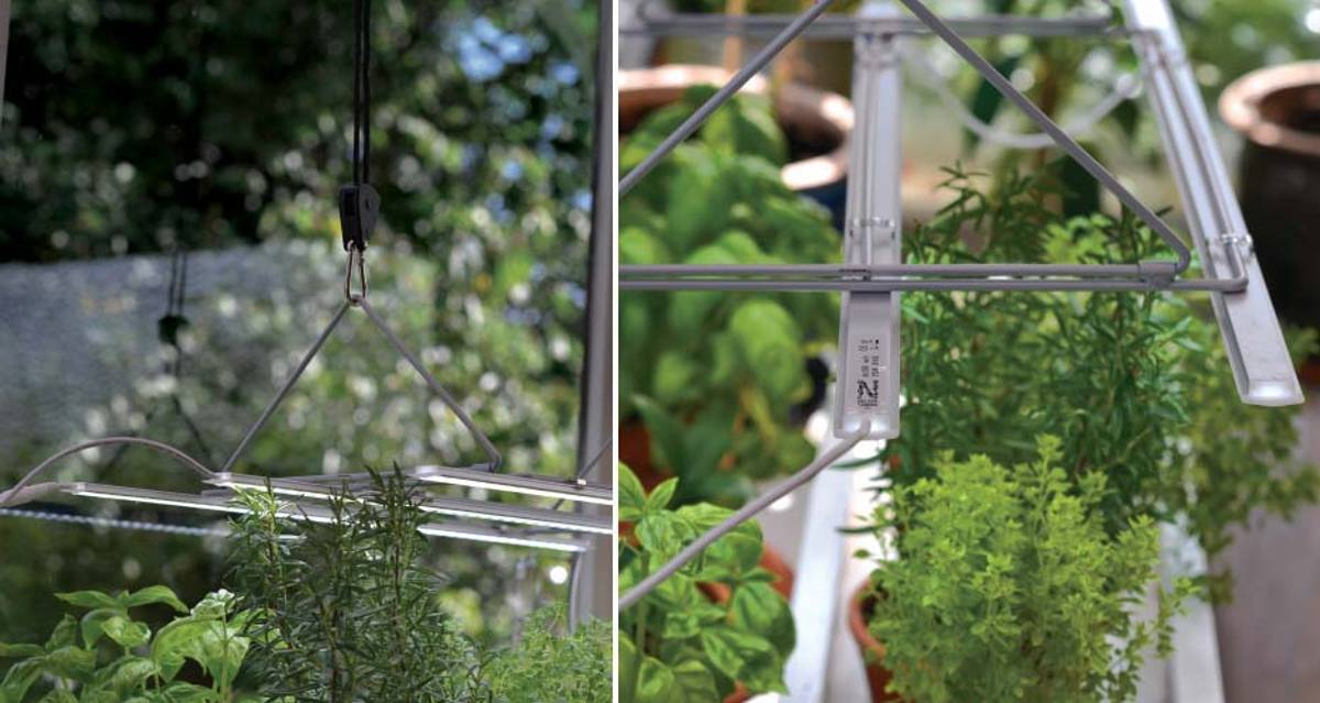 LED Plantelys, Lyslist startpakke 60 cm