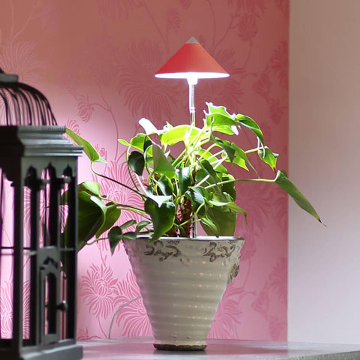 Sunlite LED vekstlampe 'Rød'