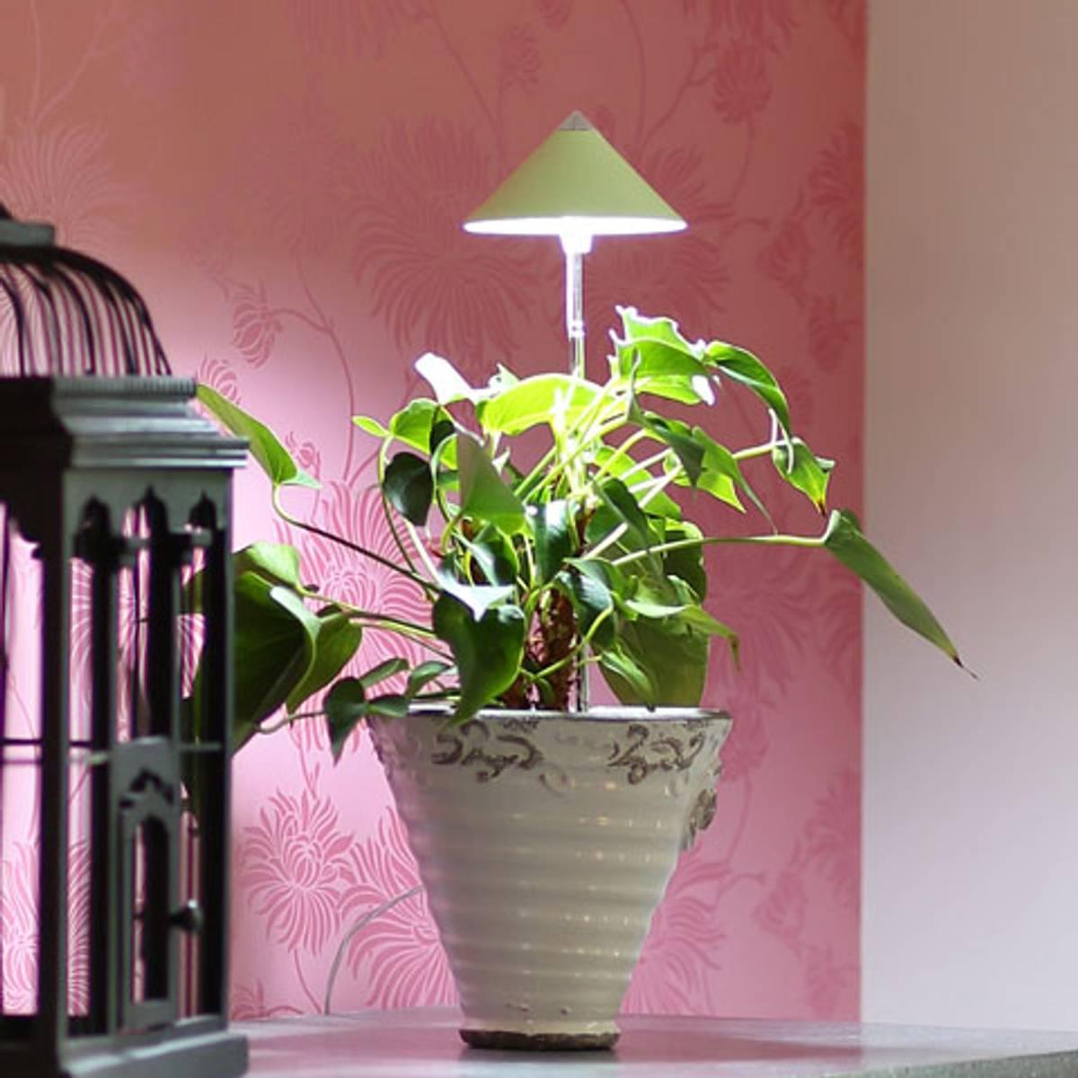 Sunlite LED vekstlampe 'Limegrønn'