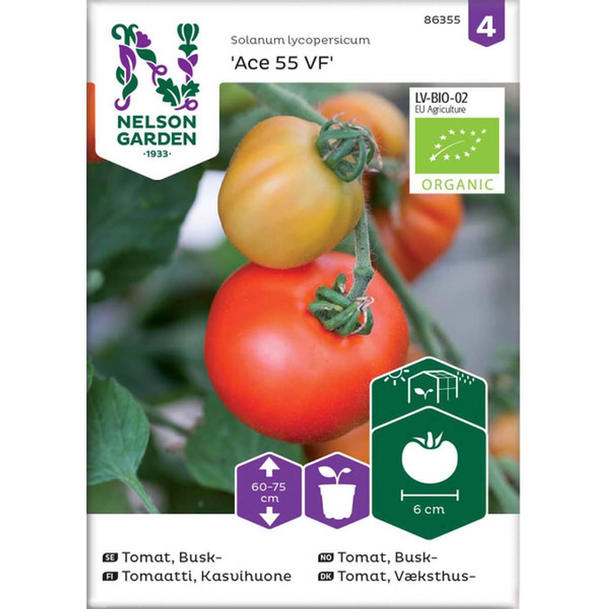 Tomat, Veksthus- 'Ace 55 VF'