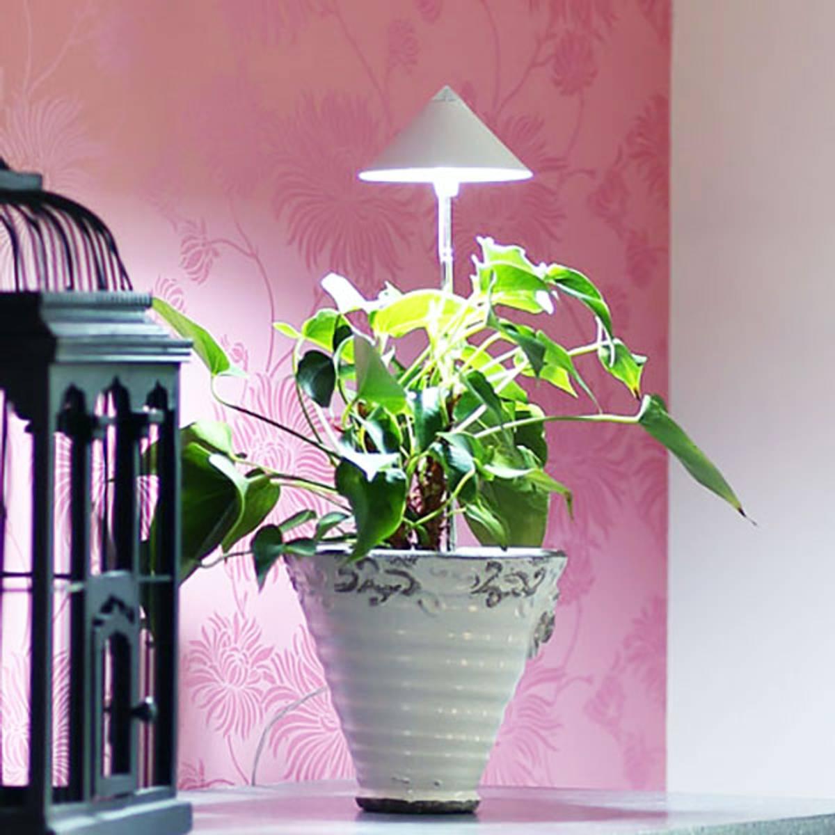 Sunlite LED vekstlampe 'Hvit'