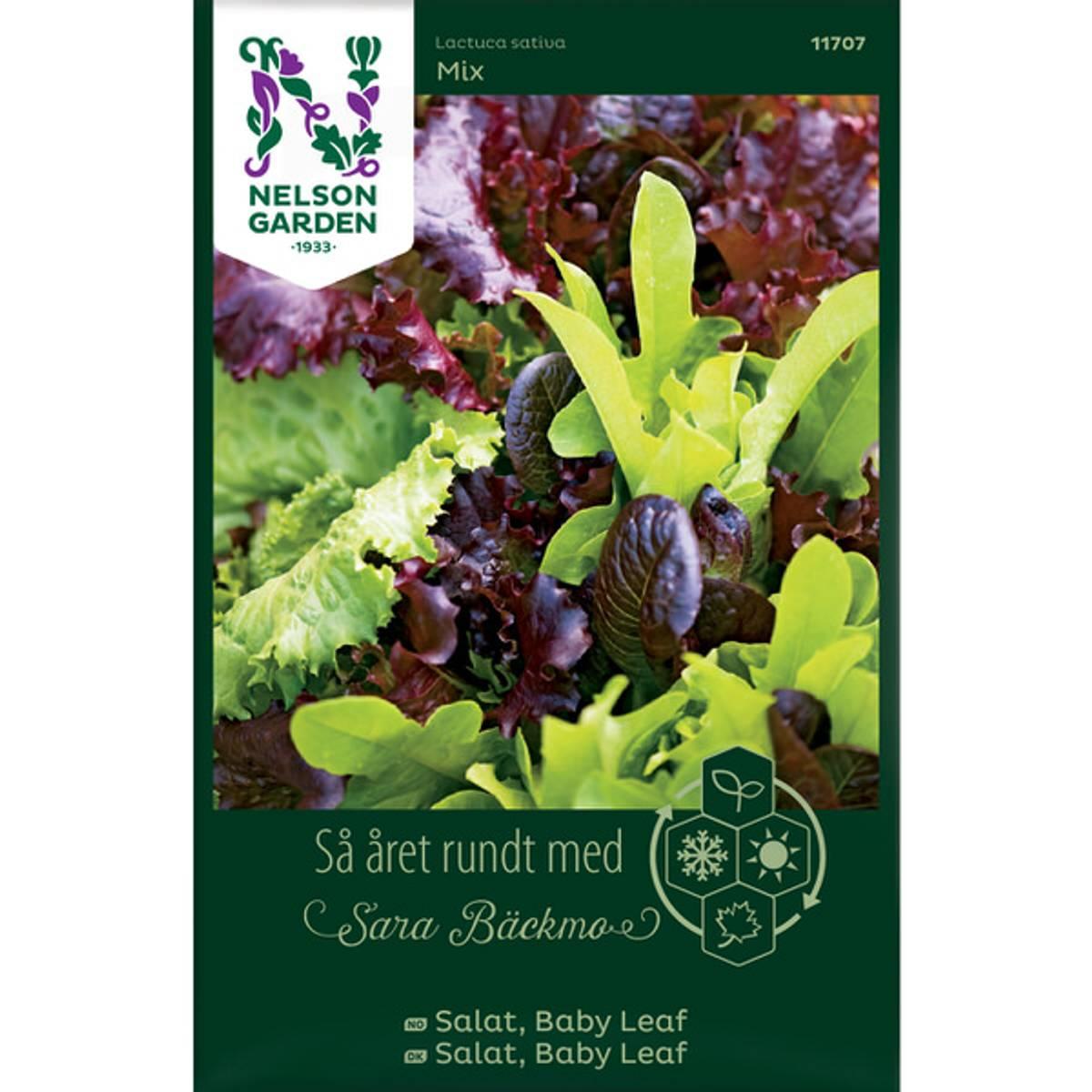 Salat, Baby Leaf Mix SB