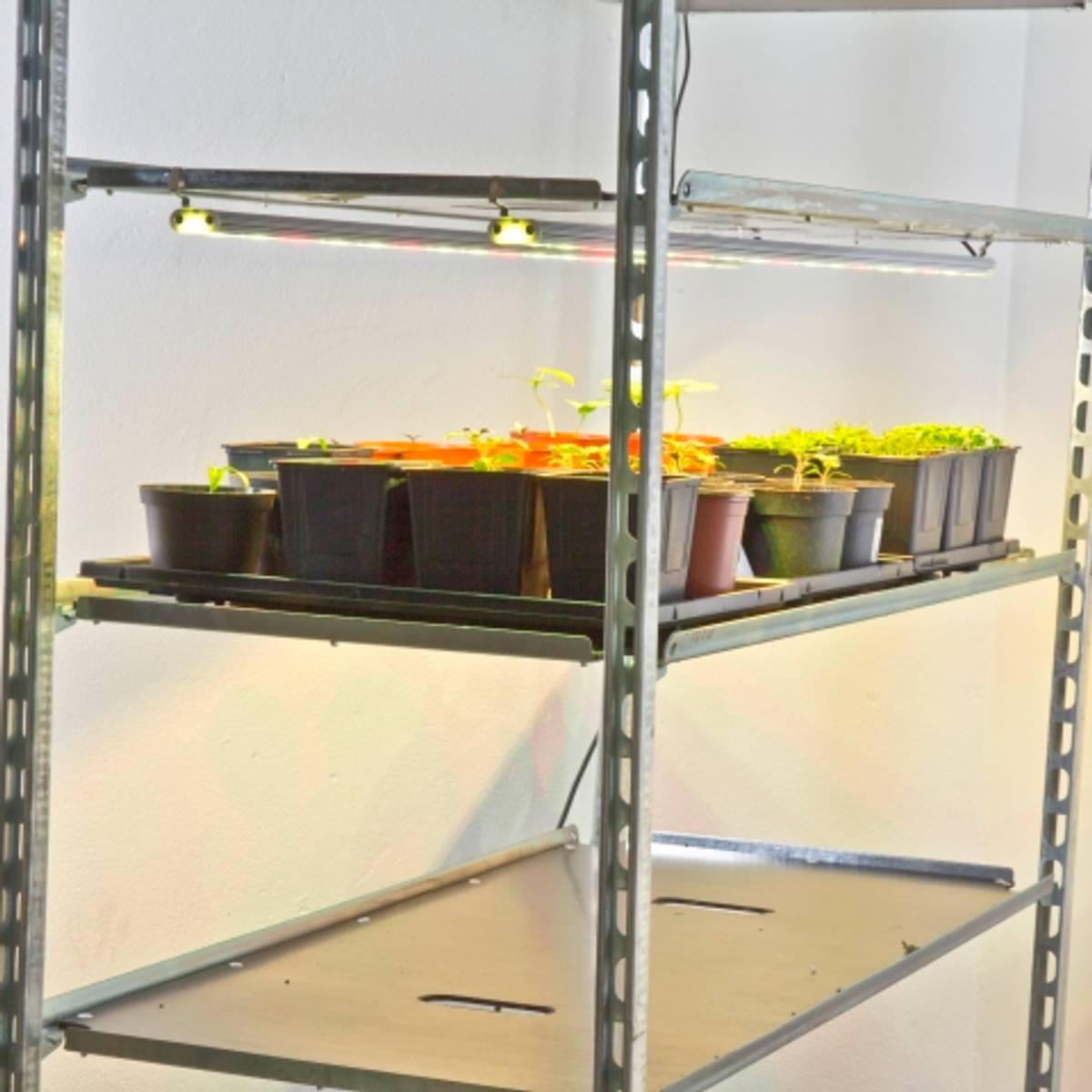 LED-pakke Vekstlys til hyllesystem