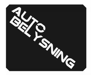 Bilde av Isskrape med logo