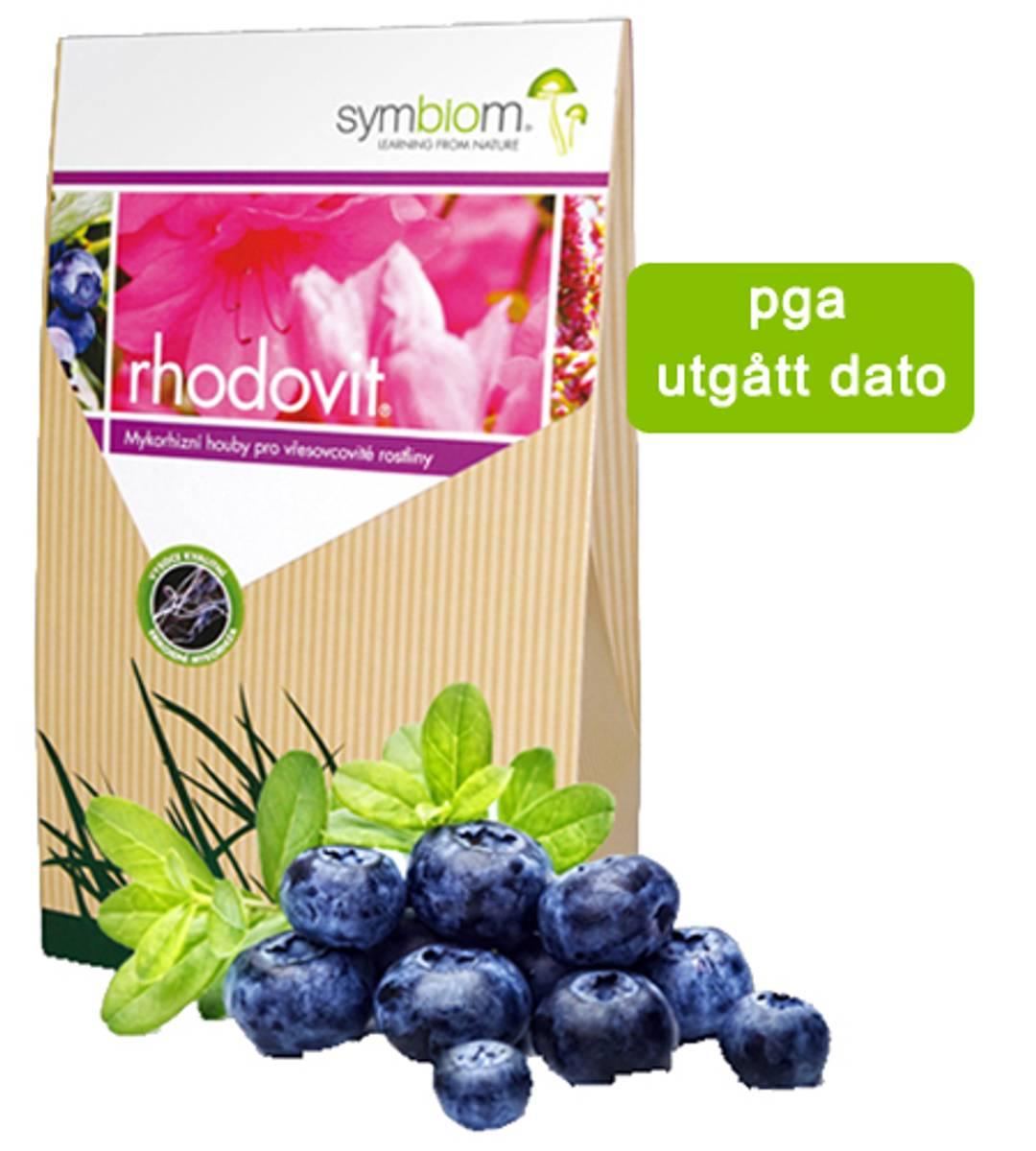Rhodovit-Ericoid mykorrhiza