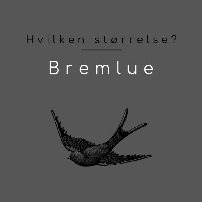 Bilde av STØRRELSER