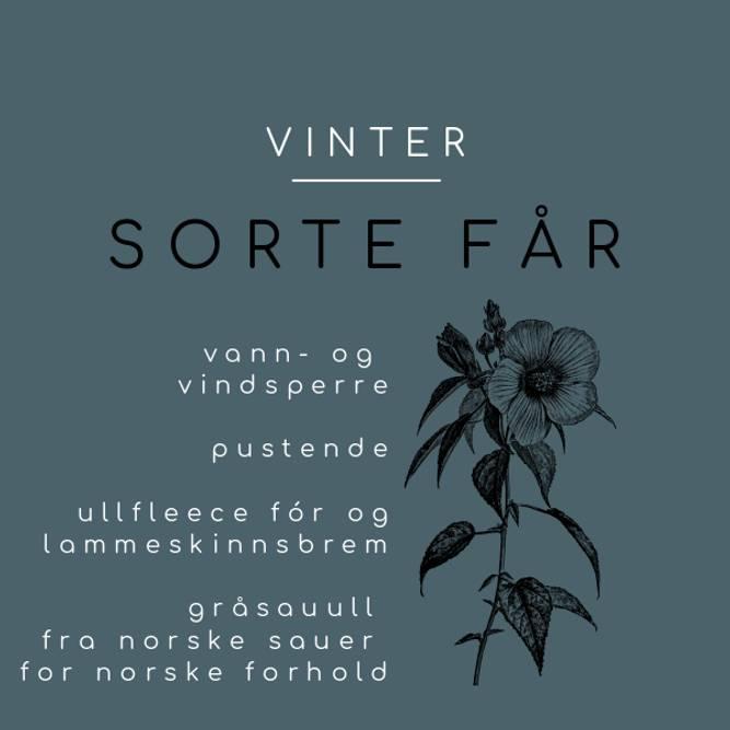 Bilde av SORTE FÅR VINTER (42/46)