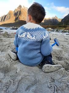 Bilde av Skrei-genser baby