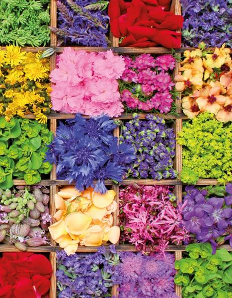 Bilde av Blomster Skrivebok