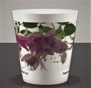 Bilde av Drikkekrus med fotomotiv Fuchsia 'Holly's Beauty'