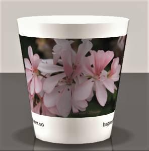 Bilde av Drikkekrus med fotomotiv Pelargonium 'Honeywood