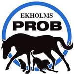 Bilde av Ekholms PROB