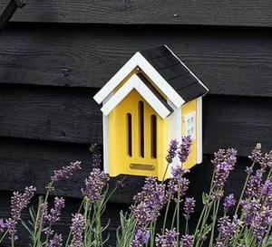 Bilde av Hus sommerfugl gult