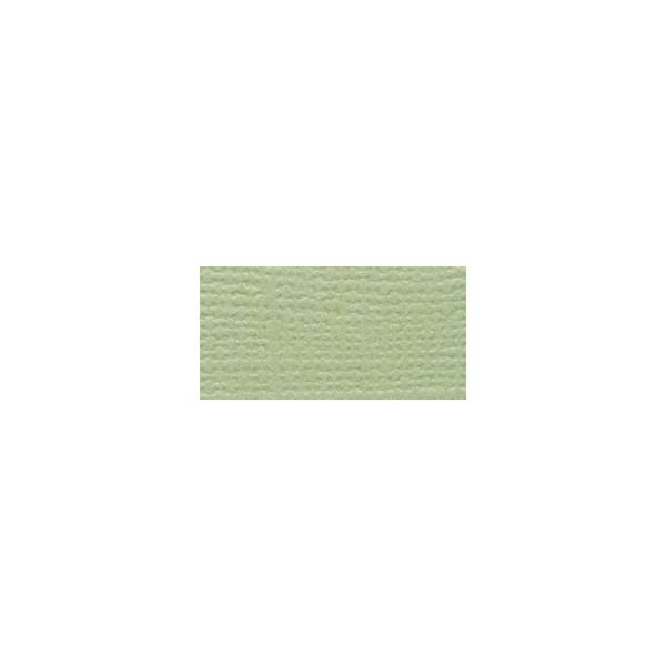 Bazzill Fourz Cardstock 12X12 Spring Breeze/Grasscloth