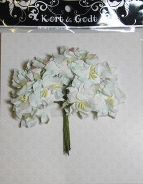 Kort og Godt Gardenia lys turkis