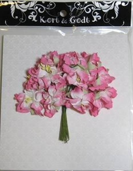 Kort og Godt Gardenia rosa