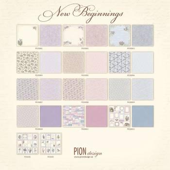 Pion - New beginnings