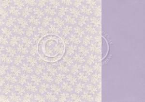 Bilde av Pion - New Beginnings - Graceful Blooms