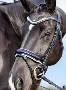 Bilde av Horseline Hodelag Danna