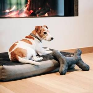 Bilde av Kentucky Dog Toy Bone