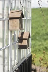 Bilde av Fuglehus av gjenbrukstre