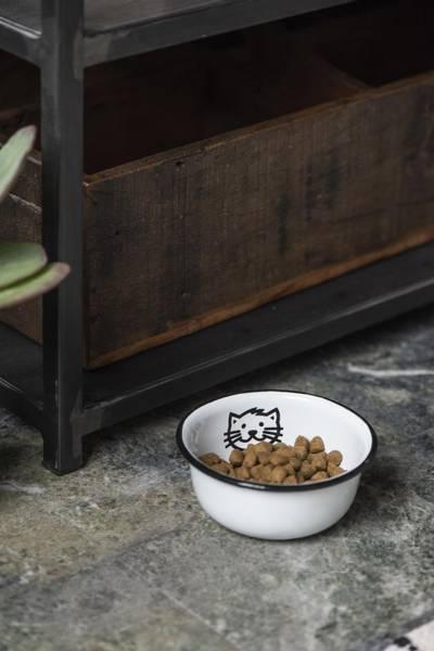 Katteskål i emalje