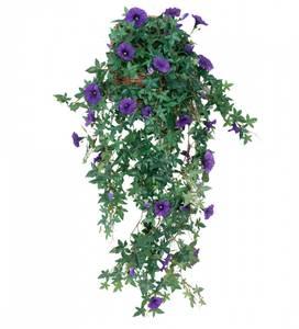Bilde av Blomma for dagen inkl. veggkrukke 95cm