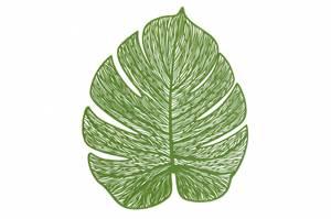 Bilde av Dekkebrikke blad grønn 33x40cm