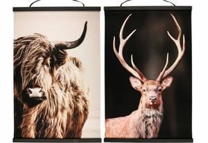 Bilde av Bilde plakat av Ku eller hjort 80x120cm