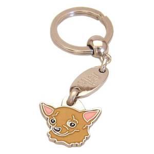 Bilde av Chihuahua korthår