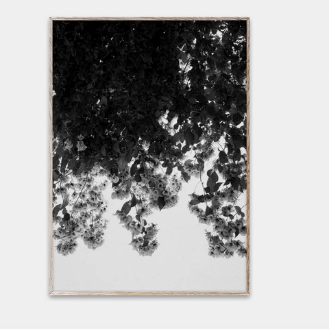 Bilde av Flowers 50 x 70 cm