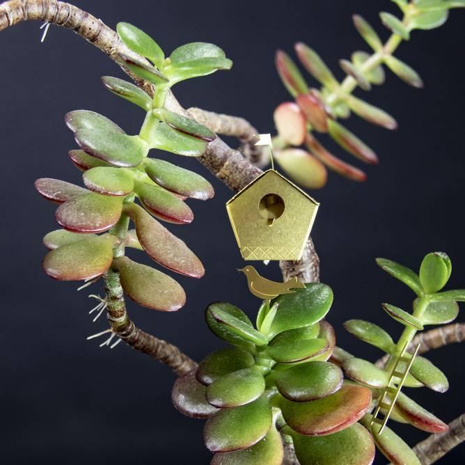 Bilde av Tiny Birdhouse for your plants