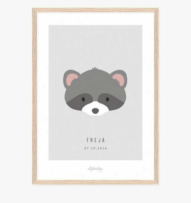 Bilde av Vaskebjørnen navneplakat