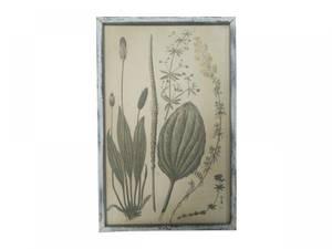 Bilde av Bilde med planteprint.