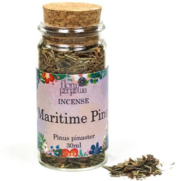 Bilde av Maritime Pine Urterøkelse