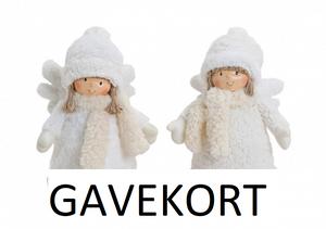 Bilde av Gavekort 300,-