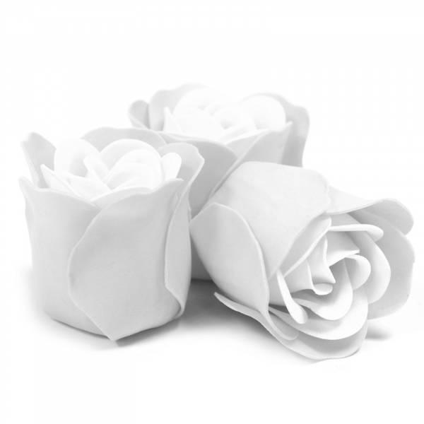 Bilde av Hvit Rose Såpeblomster
