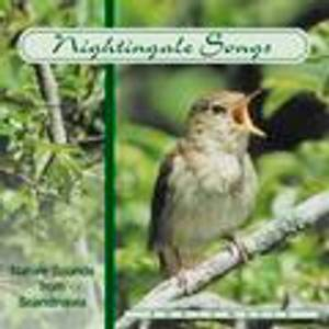 Bilde av Nightingale songs