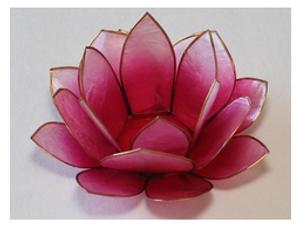 Bilde av Lotus Lys Pink