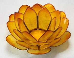 Bilde av Lotus Lys Oransje