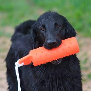 Bilde av Flytende dummie hundeleke 28cm