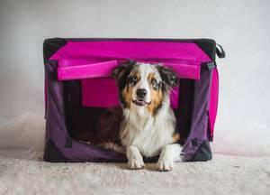 Bilde av 80cm XL Rosalilla canvas hundebur