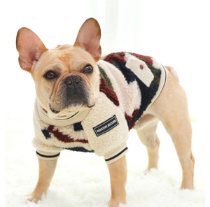 Bilde av Teddy camo-jakke til hund