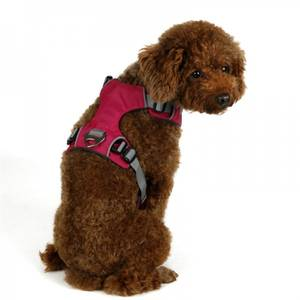 Bilde av Rosa solid comfort hundesele