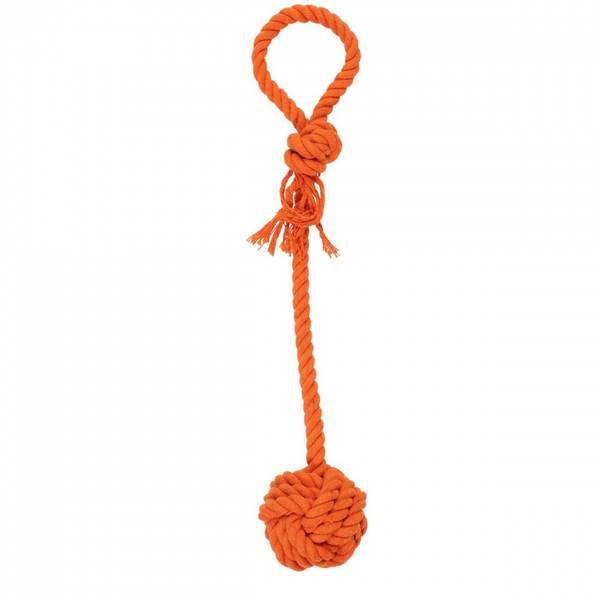 Oransj tauleke med knute til hund