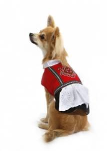 Bilde av Bunad til hund, hardanger - tispe
