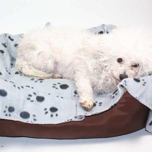 Fleecepledd til hund med potetrykk 70x100cm