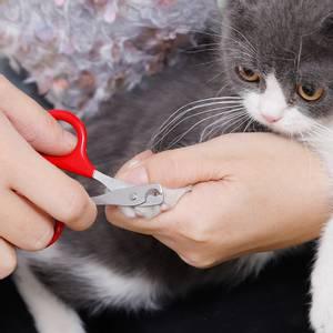 Bilde av Klosaks for katt og liten hund